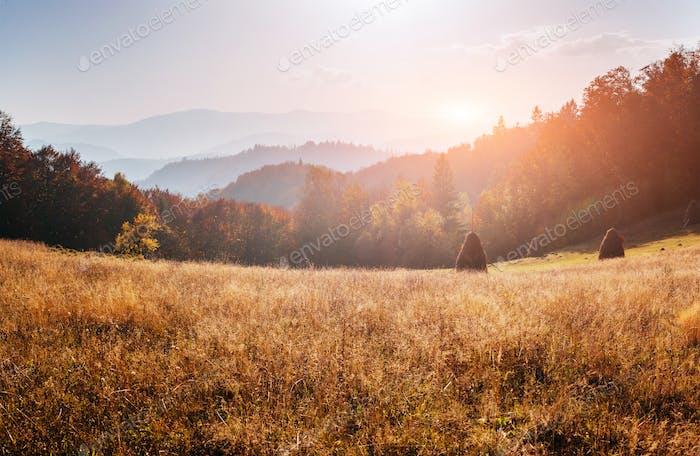 fairy autumn Landscape