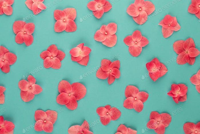 Blütenzusammensetzung.