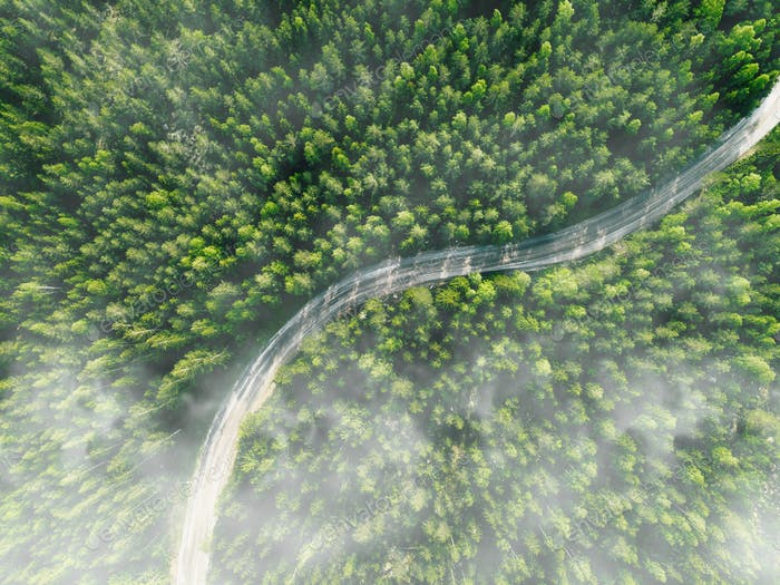 Aerial view of curved country road with green summer fog forest