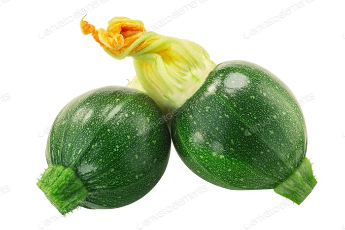 Baby Tondo zucchini with flower  isolated
