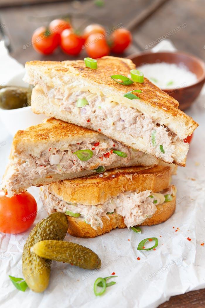 Grilled tuna melt sandwich