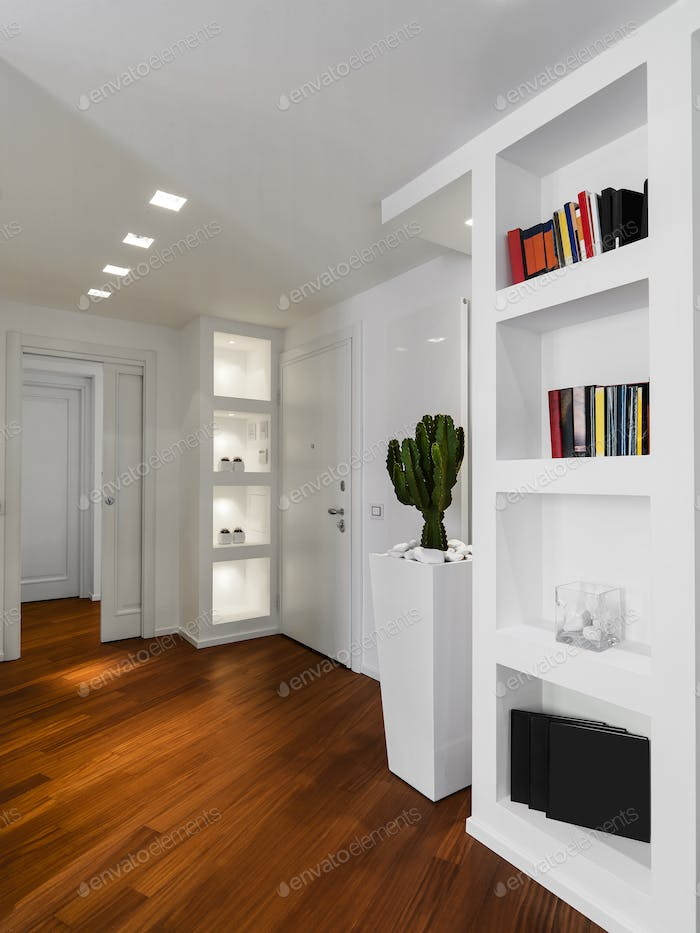 Interiors of a Modern Living Room withMain Door