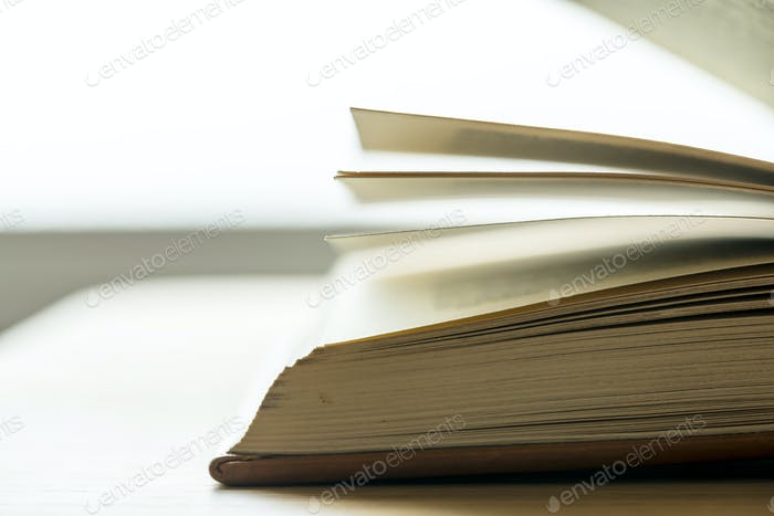 Closeup of an open book educational, academic and literary concept