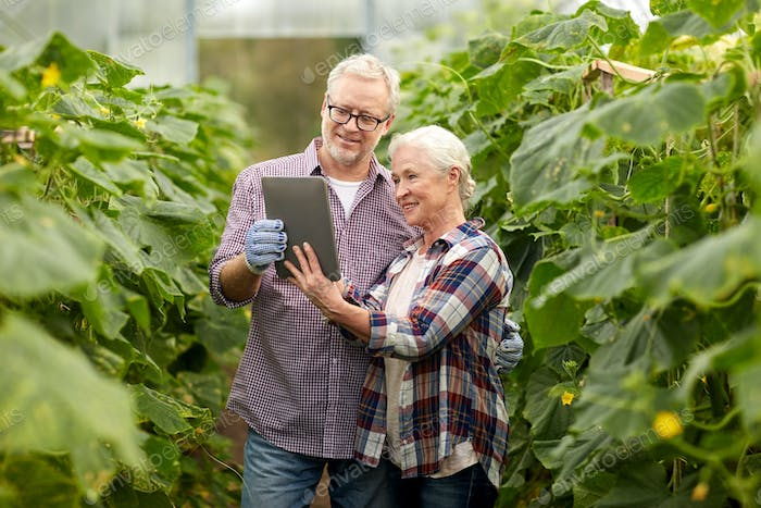 senior couple with tablet pc at farm greenhouse