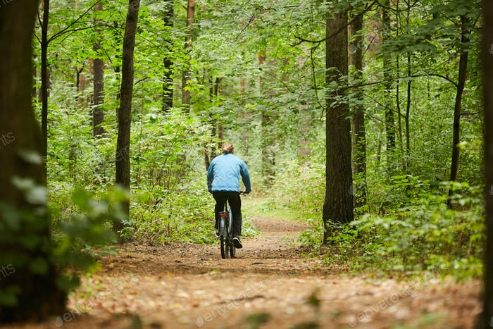 Cycling along forest path