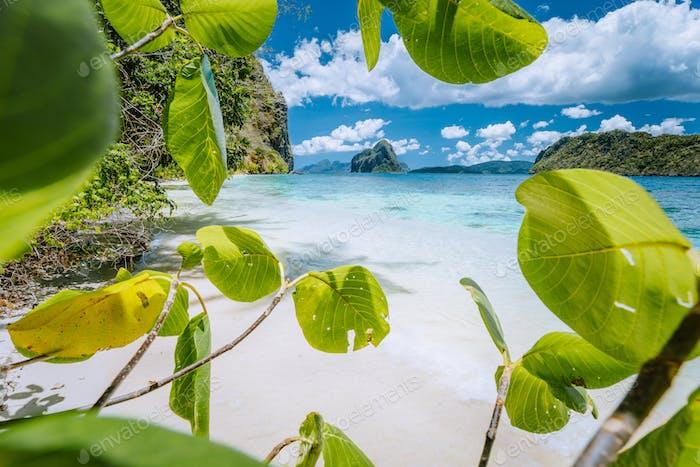 Leaves framed shot of bizarre amazing Pinagbuyutan island made beach on Lagen Island. El Nido