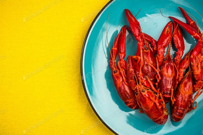 Red Crayfish or Lobster on Colorful Background