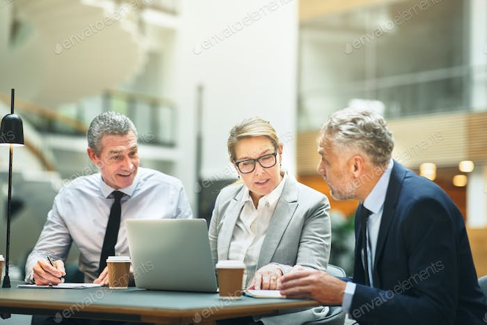 Smiling mature business colleagues meeting together in an office