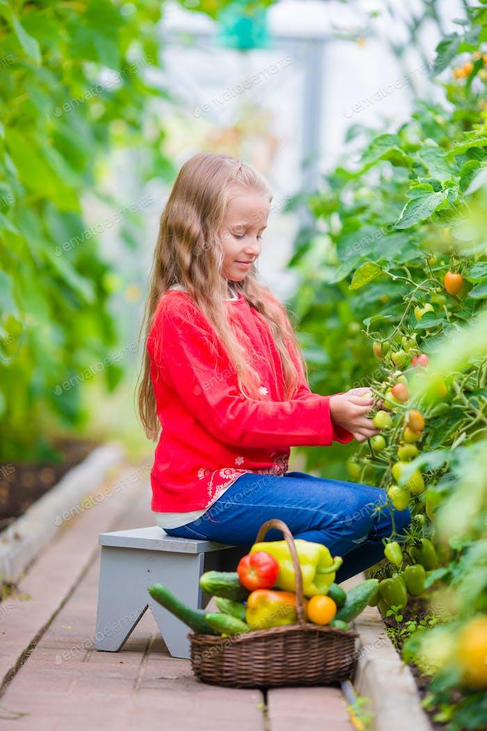 Liebenswert kleines Mädchen mit einem Korb im Herbst Tag im Freien