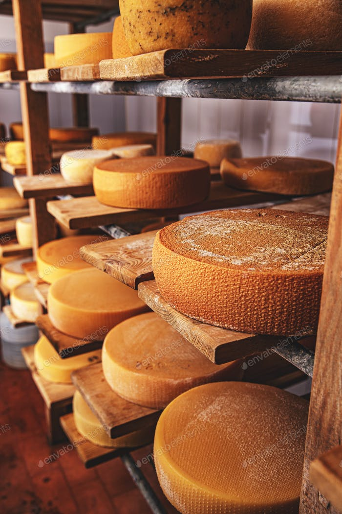 Wheels of cheese