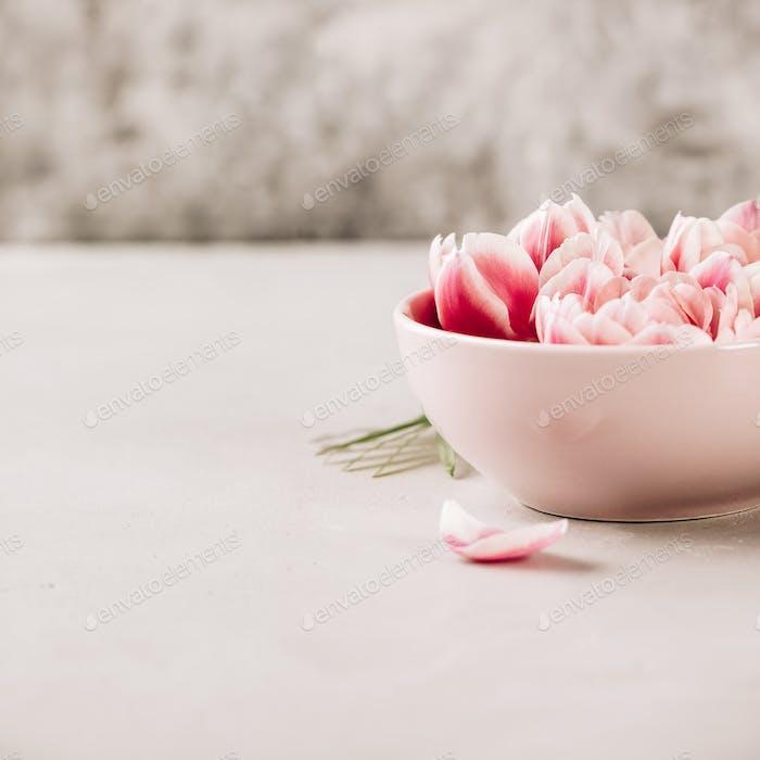 Rosa Blumen schweben im Wasser auf blauem Hintergrund