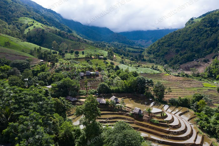 Terraced rice paddy field in Chiang Mai, Thailand.