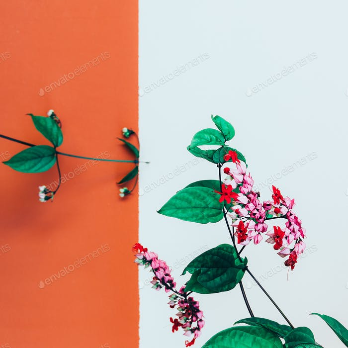 Red tropical flower Minimal fashion art