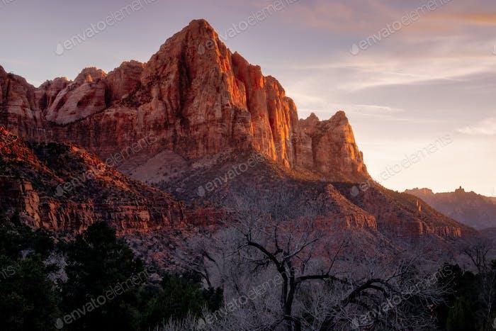 Zion national park sunset landscape view of Watchman peak, Utah