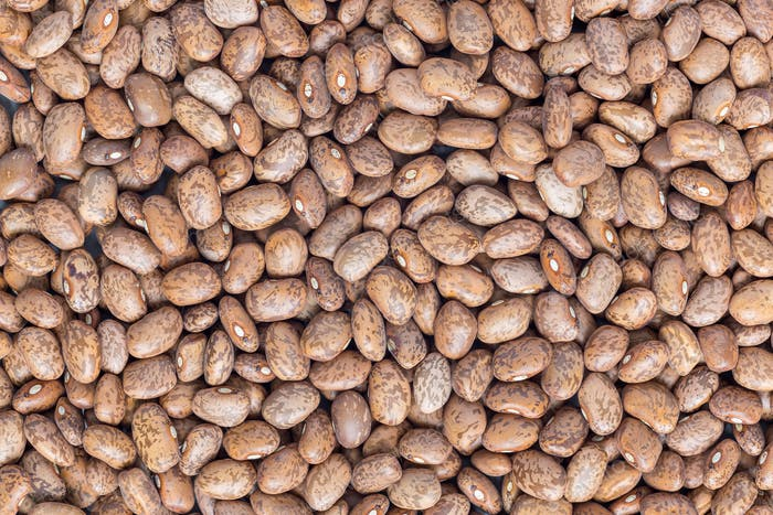 Food background with uncooked dry pinto beans, top view