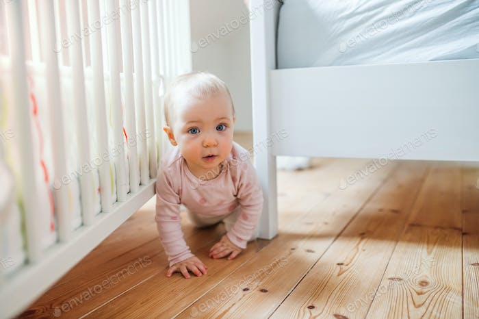 A toddler child crawling on the floor at home.