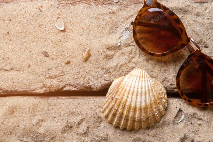Seashell and brown sunglasses