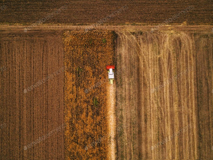 Thumbnail for Aerial view of combine harvesting corn field