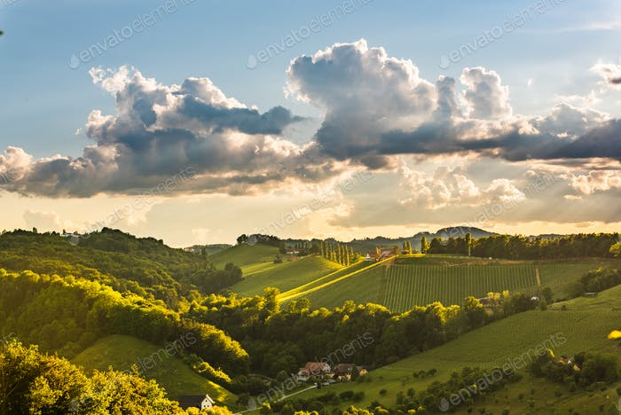 Beautiful landscape of Austrian vineyards in south Styria. Famous Tuscany like place to visit