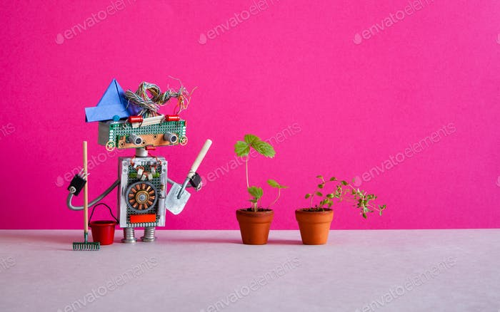 Surprised robot gardener breeder agronomist holding a shovel and rake.