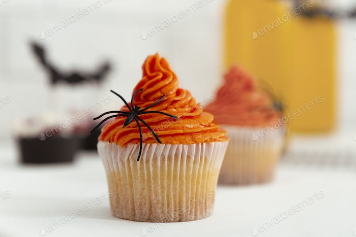 Pumpkin Halloween cupcake with spider as decoration