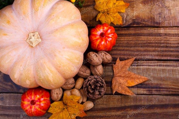 Big pumpkin and nuts