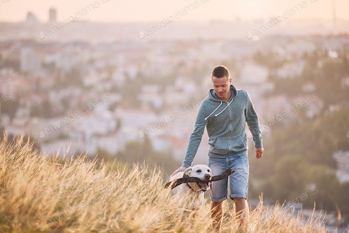 Paseo por la mañana con perro