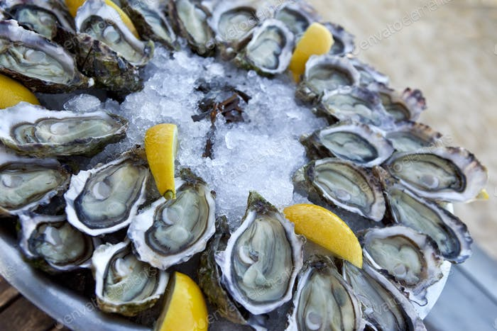 Oysters and lemon on a plate