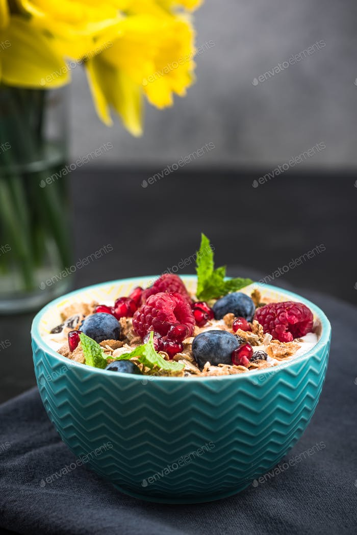 Crunchy granola with berry fruits with milk in bowl