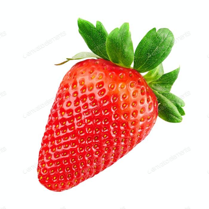 Rote Erdbeere isoliert