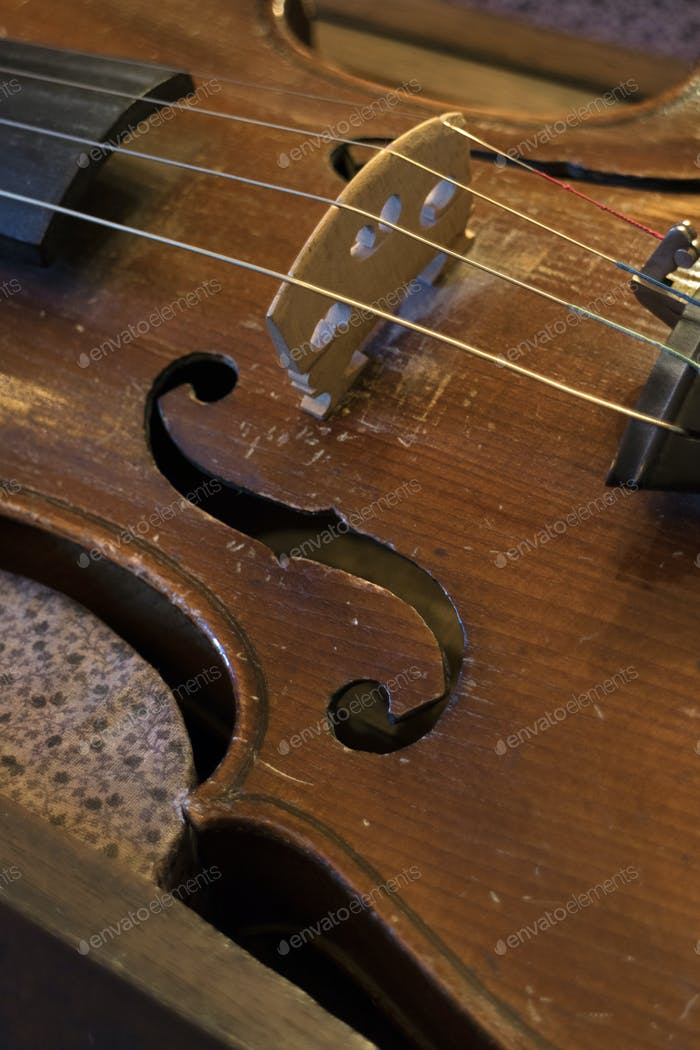 Old violins string bridge