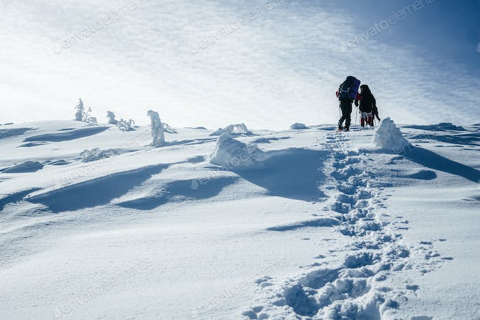 Climbers Walking on Hill in Gorgany Mountains
