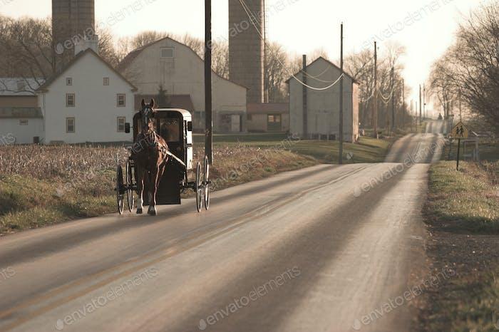 Amish4