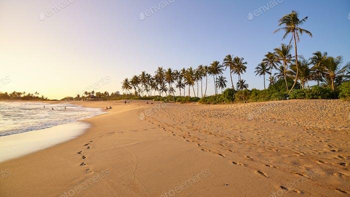 Sri Lanka paradise beach at sunset.