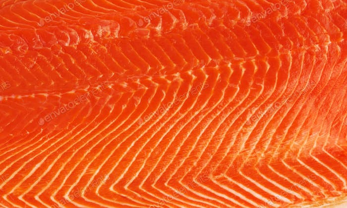 fresh salmon fillet background