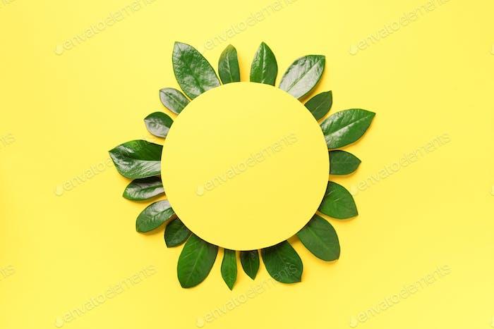 Frühlingsgrünes Blättermuster auf gelbem Hintergrund. Kreatives Layout. Draufsicht. Flache Lag