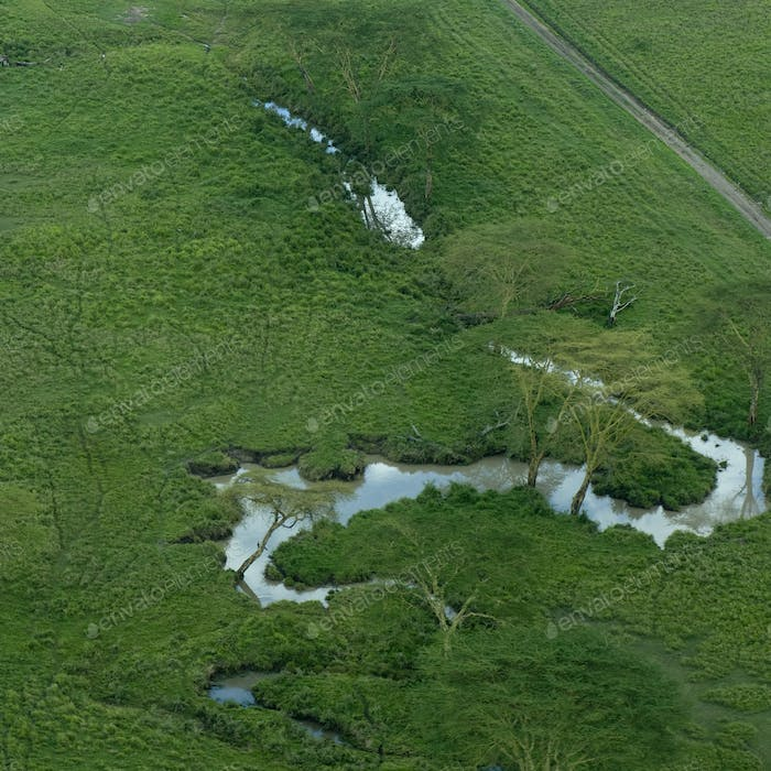 aerial view on a river in the serengeti