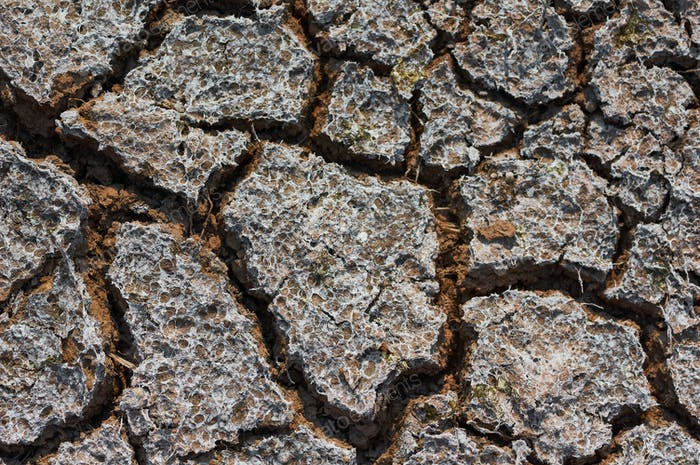 The image of dry and cracked ground that reminds of global warming