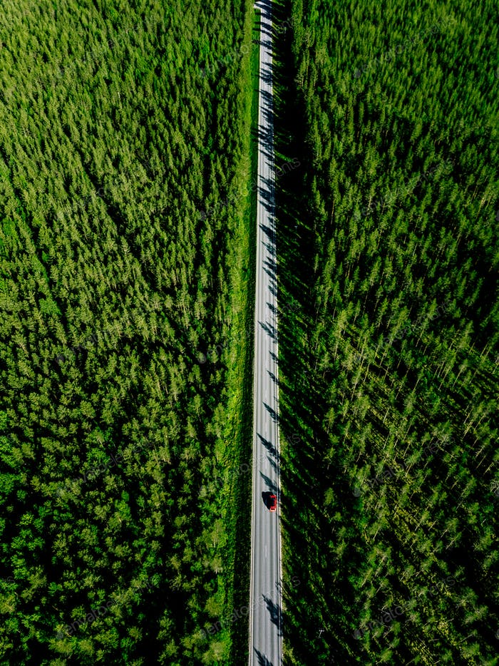 Aerial view of a country road with red car in the middle of green summer forest