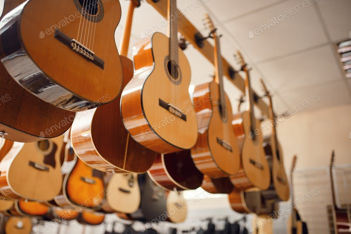 Rows of acoustic guitars in music store