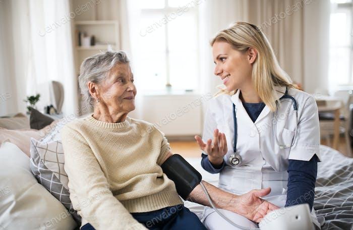 Ein Gesundheitsbesucher, der einen Blutdruck einer älteren Frau zu Hause misst.