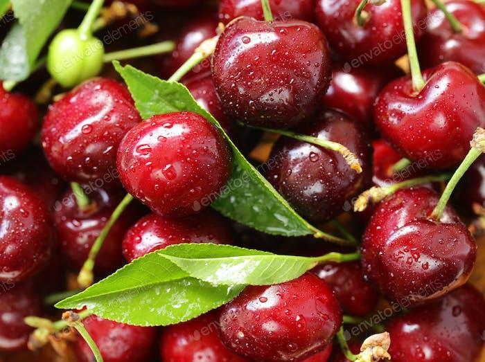 Fresh Ripe Cherry