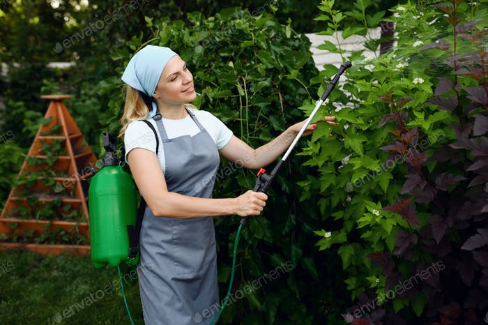 Woman in apron watering flowers in the garden