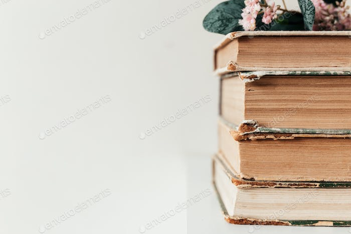 Old books, concept of learning, study, education, science, wisdom, knowledge