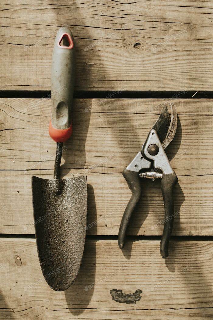 Gardening scissors and trowel on a wooden background flatlay