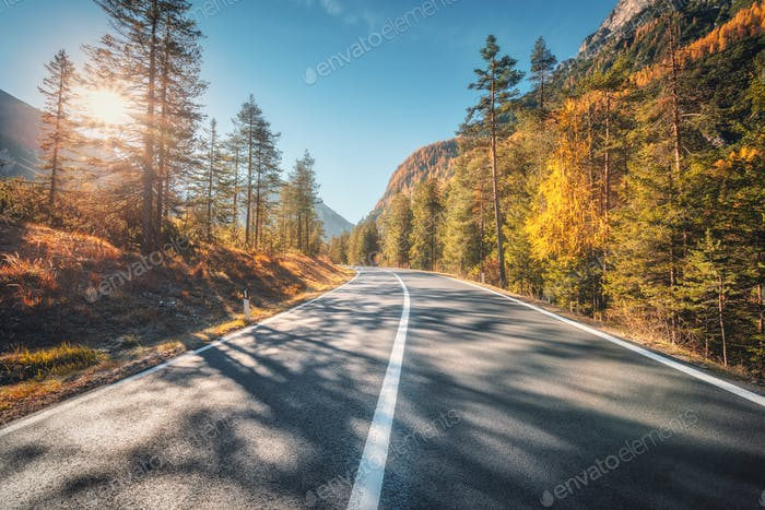 Road in autumn forest at sunset in Italy