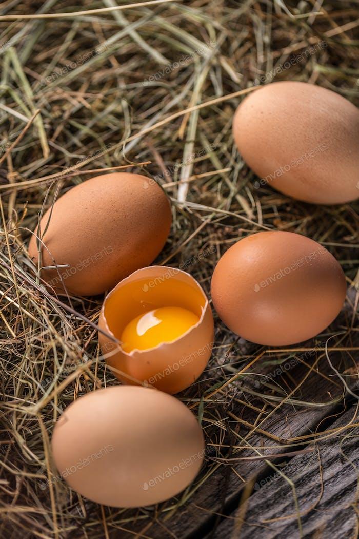 Brown hen eggs