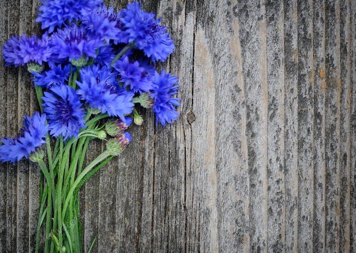 Kornblume blaue Blüten (Centaurea cyanus) auf einer alten Holztabl