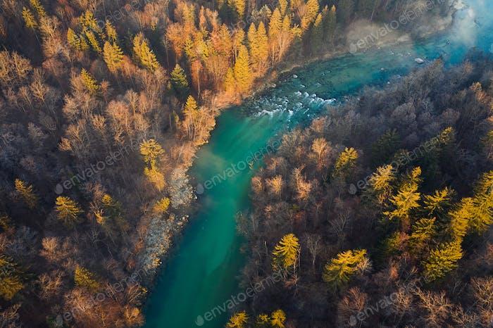 Fliegen über einen Herbstwald und Fluss