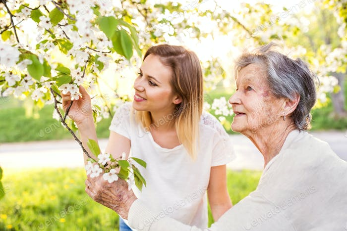 Elderly grandmother and granddaughter under the tree in spring nature.